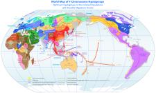 World Map of Y-DNA Haplogroups